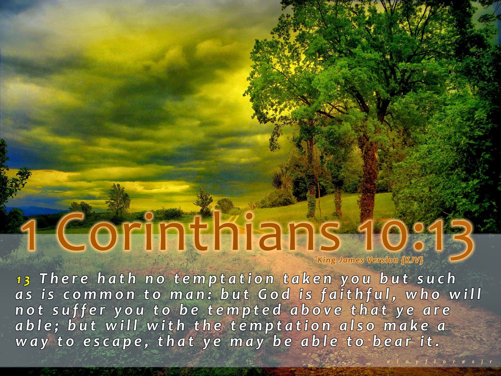 Jesus Bible Verse Christian Kjv Bible Verse Faith