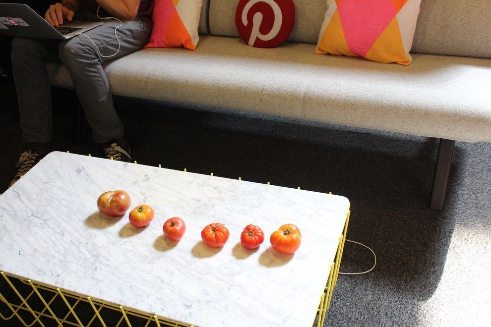 And a twee row of heirloom tomatoes. | 43 Ways Pinterest's Office Is The DIY Paradise You'd Expect