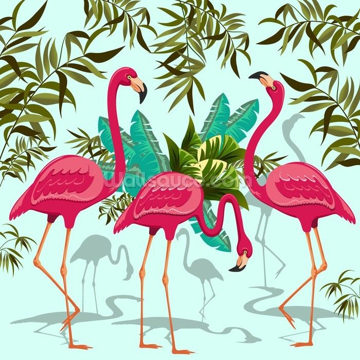 Tropical Pink Flamingos With Images Flamingo Wallpaper Pink Flamingo Wallpaper Pink Flamingos