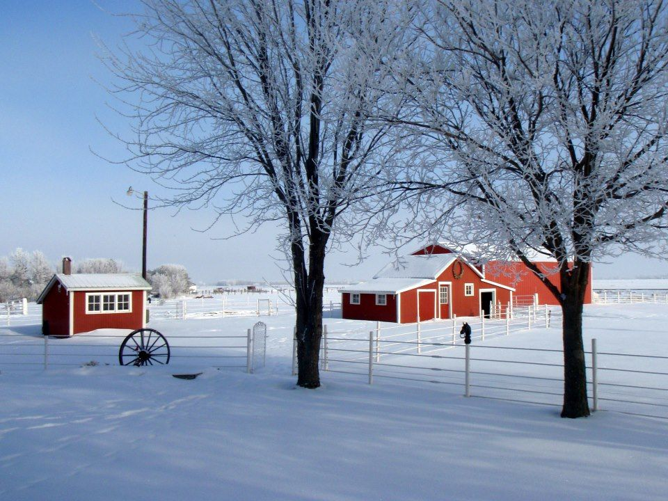 Winter Scenery Near Watertown South Dakota South Dakota