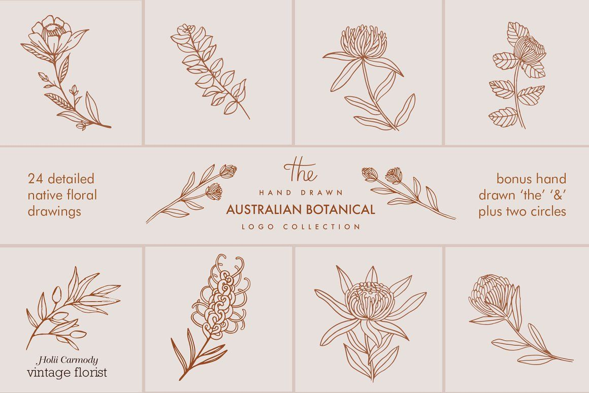 Hand drawn floral logo collection tops at creative market