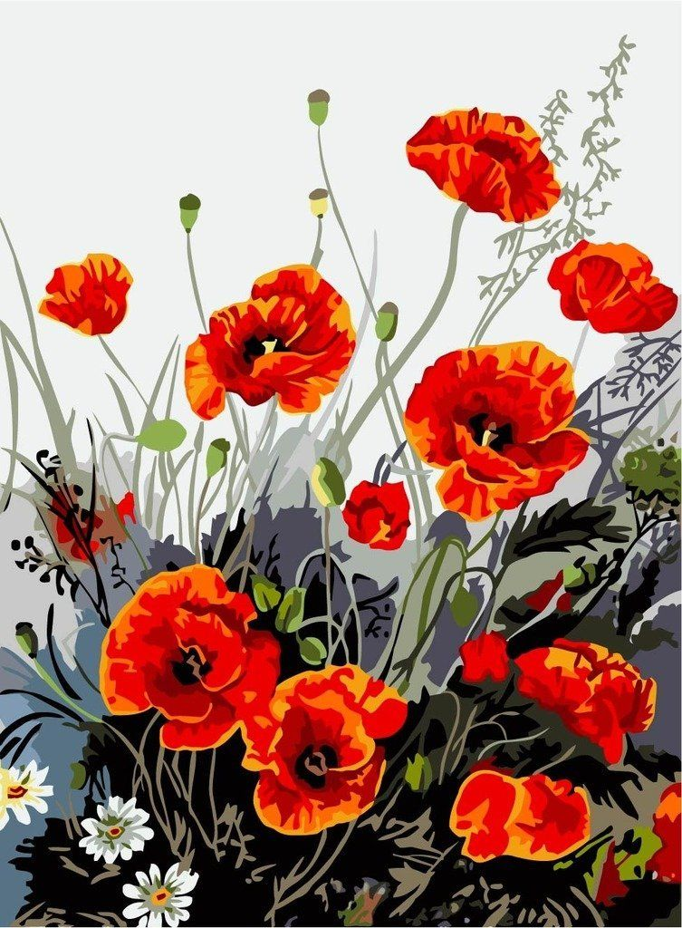 New Release Diy Oil Painting By Numbers Paint By Number Kits Red Poppy 16 20 Inches Digital Oi Mohn Malerei Wie Man Blumen Malt Olgemalde Auf Leinwand