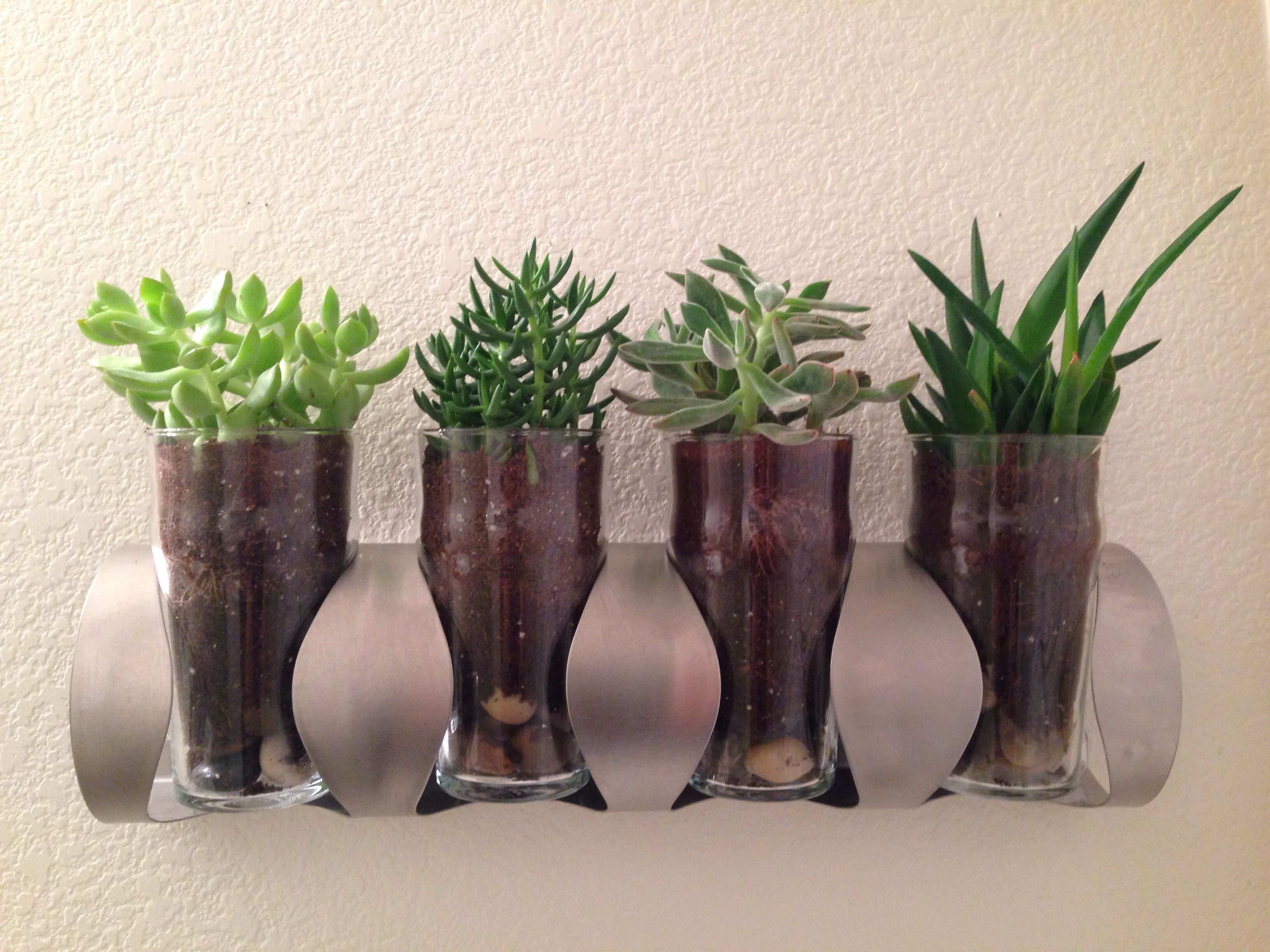 Discovered the VURM wine rack from IKEA doesn't accommodate wide bottles, so repurposed it as a planter by hanging it horizontally with pint glasses. Boom. Tiny little succulent garden!