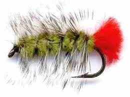 Resultado de imagen para fly pattern for trout