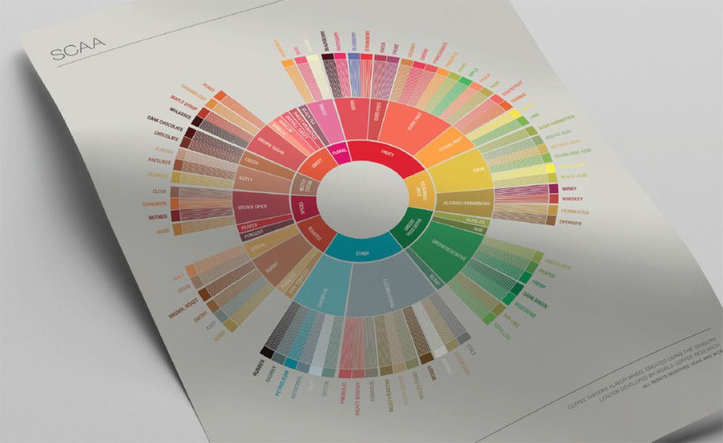 Taste Coffee Like A Pro With This Gorgeous Flavor Wheel Coffee Flavor Speciality Coffee Coffee Industry