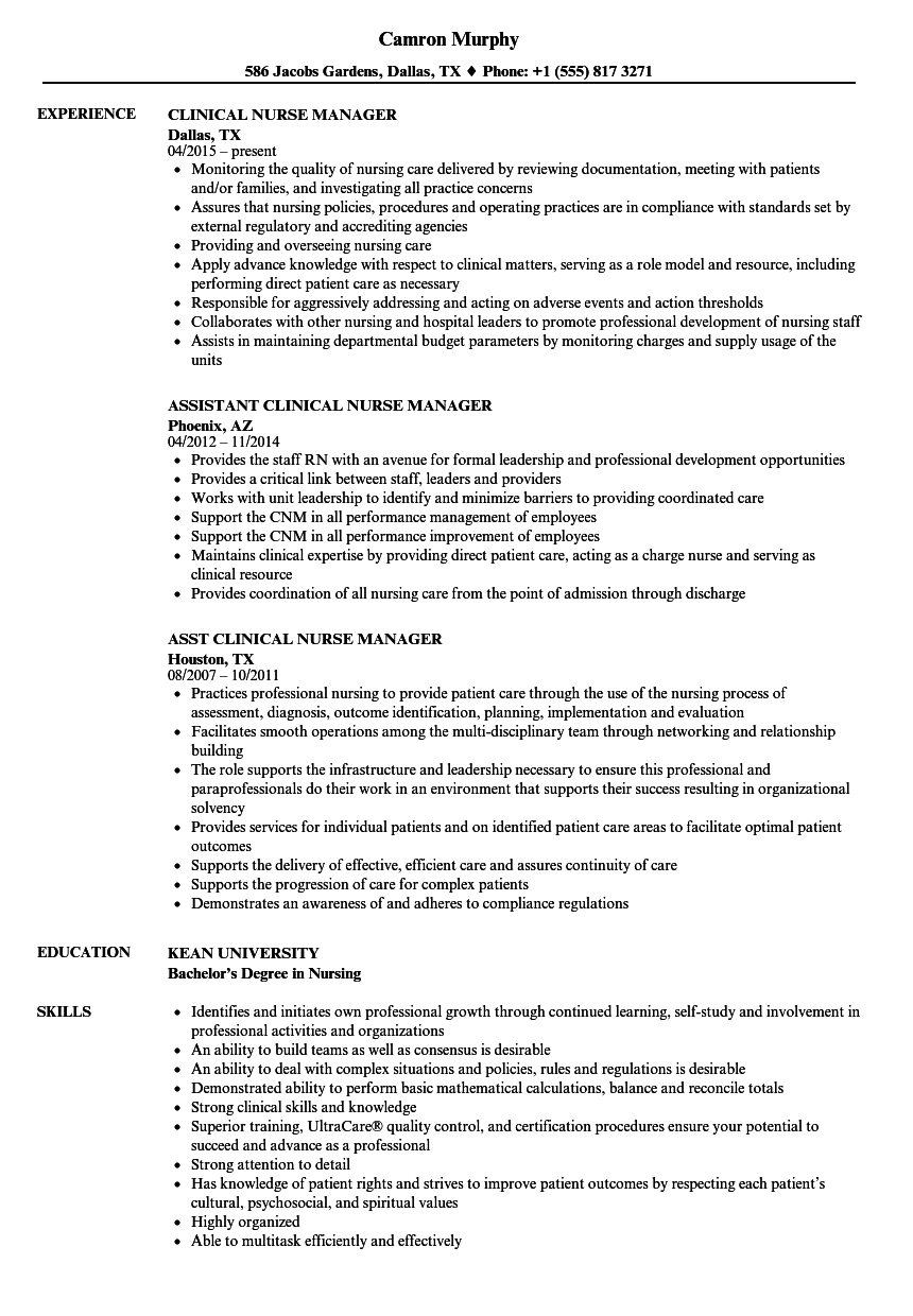 Resume Examples Nurse Manager Project Manager Resume Job