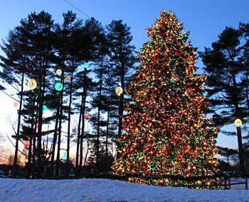 L.L.Bean's Christmas Tree Lighting Ceremony | Christmas ...