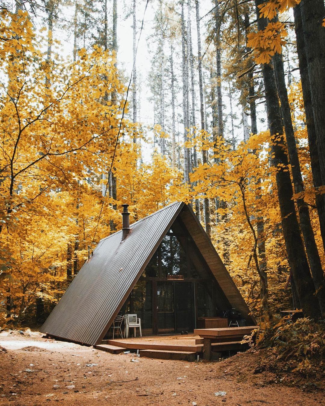Building A Backyard Fence: Best 25+ Building A Small Cabin Ideas On Pinterest