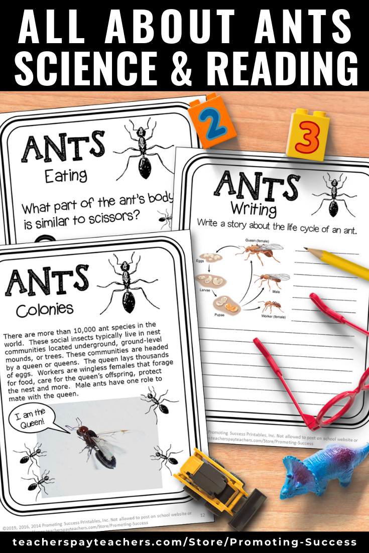 Elementary Science And Reading Comprehension Ants Worksheets For Kids 2nd 3rd 4th Grade Printables In 2020 Summer School Lesson Elementary Science Homeschool Learning [ 1102 x 735 Pixel ]
