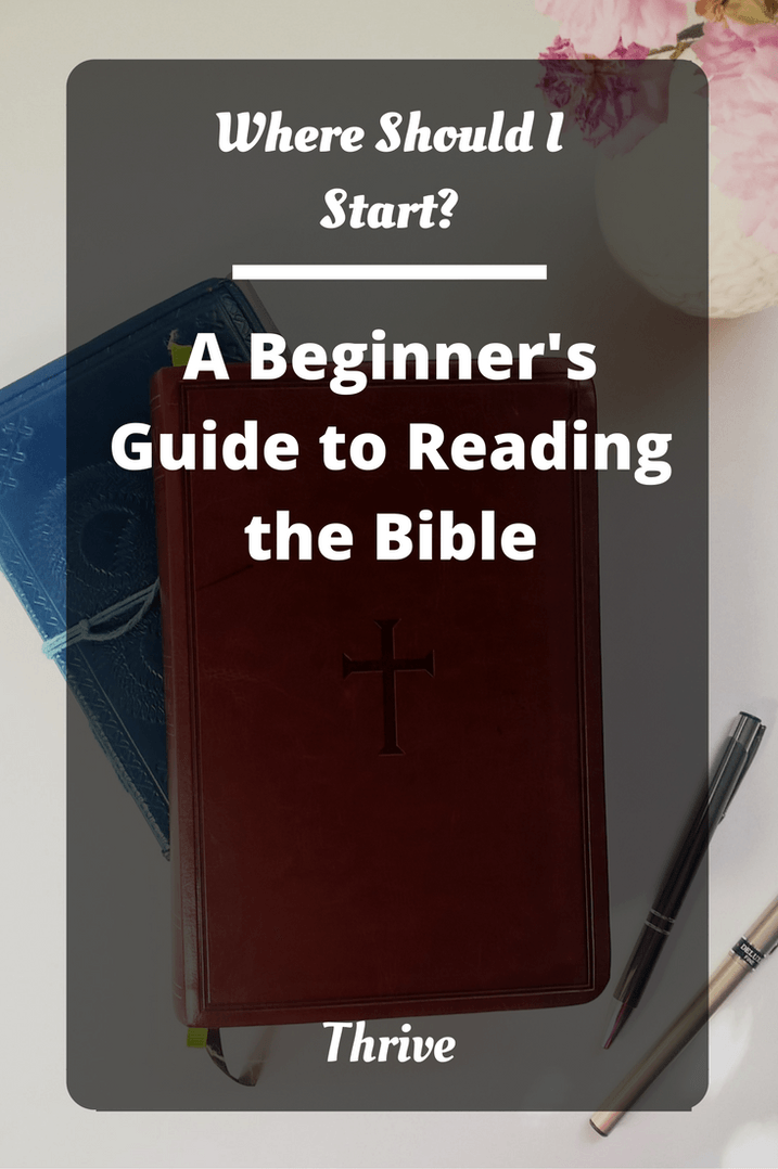 Reading the Bible can be a daunting task. With so many books and so many subjects, where should you start? Click through to find out the best places to start (+ free reading plans to keep you on track)
