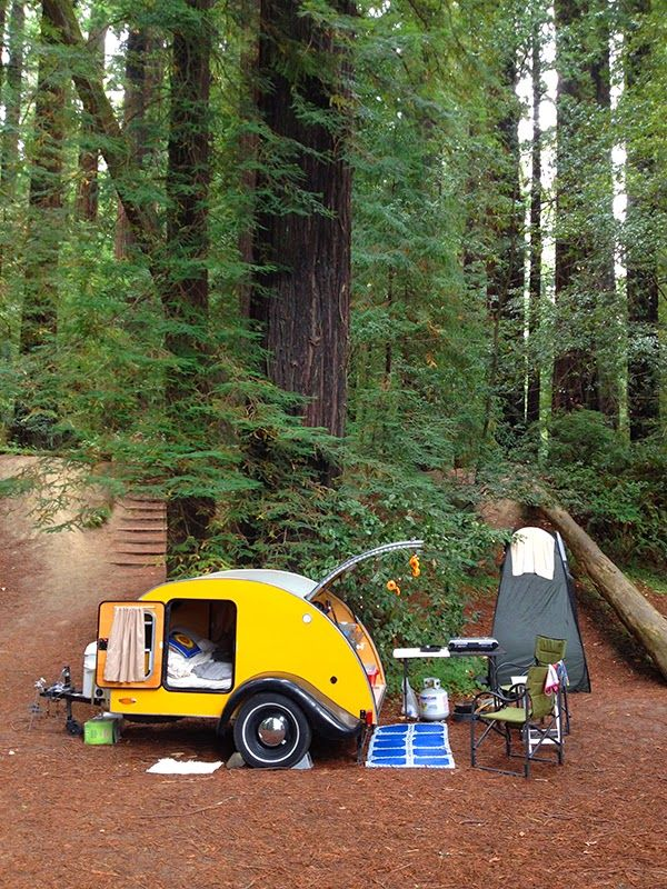 Tiny Yellow Teardrop Tall Trees Tiny Trailers International Redwood Gathering Teardrop Camper Trailer Teardrop Trailer Tiny Trailers