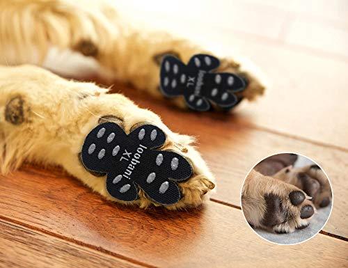 cf1ec114e256f6a7f092d2eedce80408 - How To Get Super Glue Off Dog S Paw
