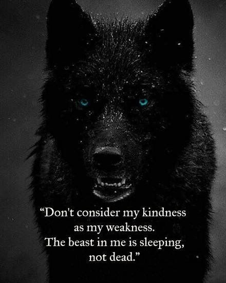 Keep silent... You still gonna get found.. | Wolf quotes ...
