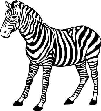 Realistic Zebra Coloring Pages Zebra Clipart Zebra Coloring