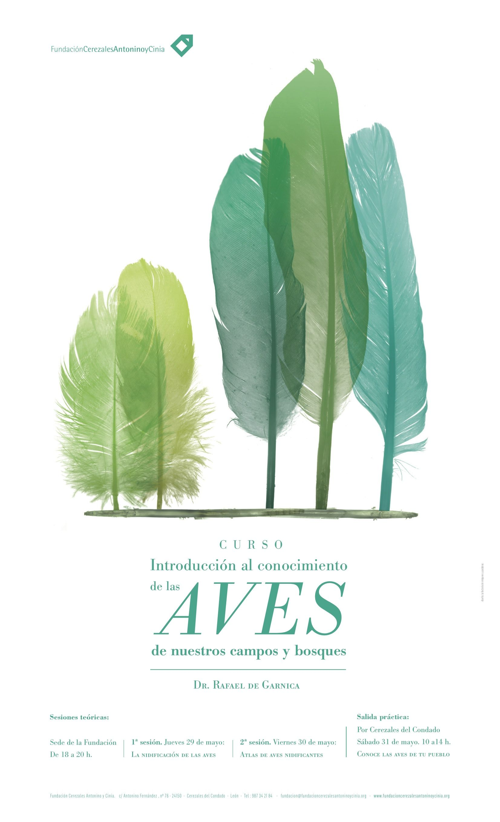 """Poster of the course """"Introduction to the knowledge of local birds """" http://www.fundacioncerezalesantoninoycinia.org/node/1115 #birds #rural #poster #feather By González Macías"""