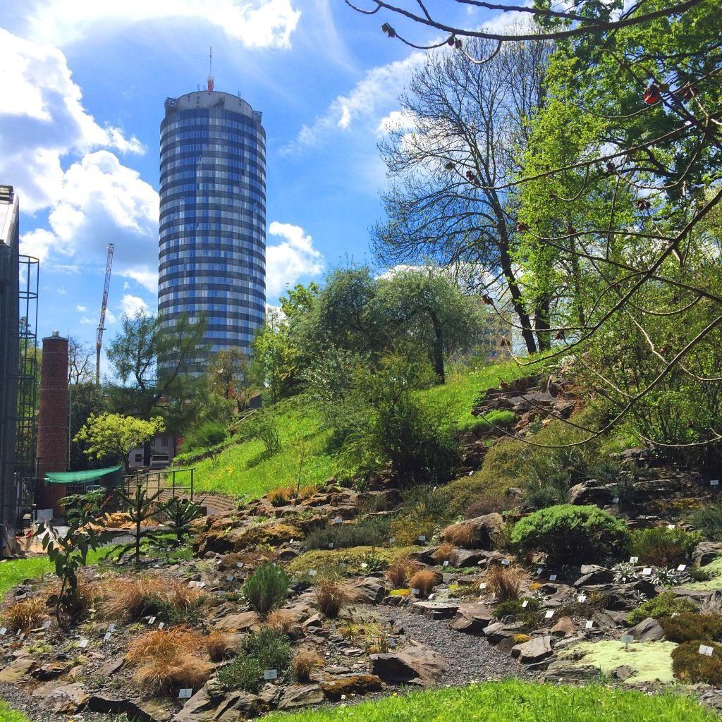 Botanischer Garten Botanischer Garten Jena Garten