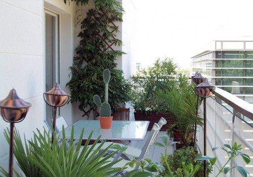 plantes m diterran enne pour petit balcon d co home pinterest plantes m diterran ennes. Black Bedroom Furniture Sets. Home Design Ideas