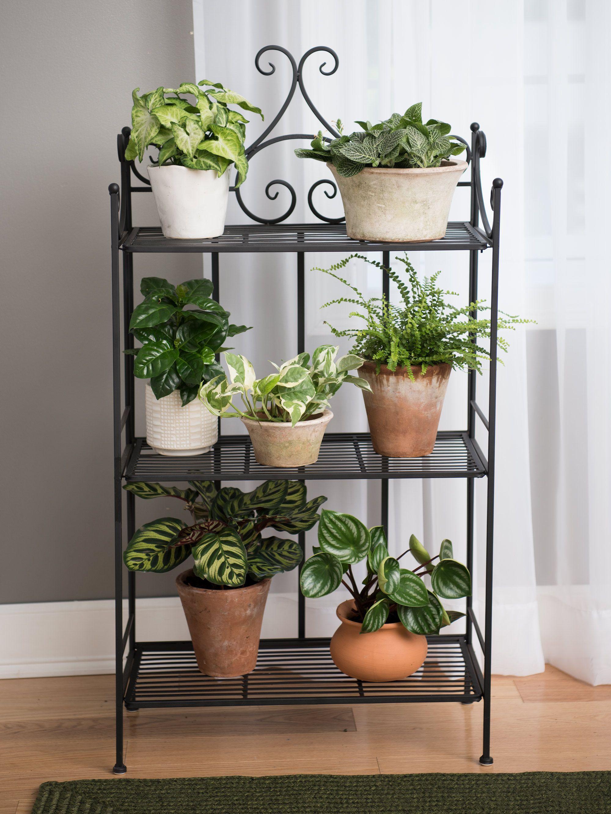 Esschert Folding Triple Pot Metal Plant Stand Gardeners Com