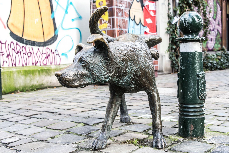Zinneke Pis in Brussels