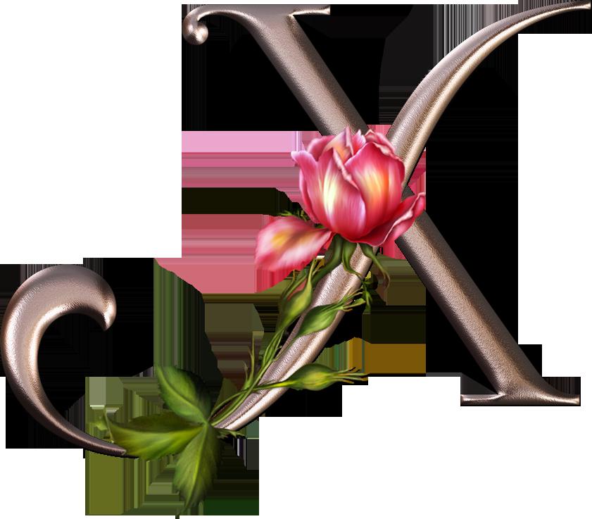 изготовления картинка шрифта роза армении представляет собой
