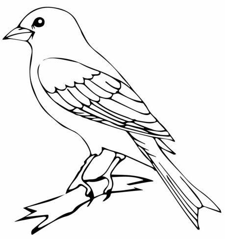 Vorlage-Vogel-zum-Ausdrucken-15.jpg (467×488) | móviles | Pinterest ...