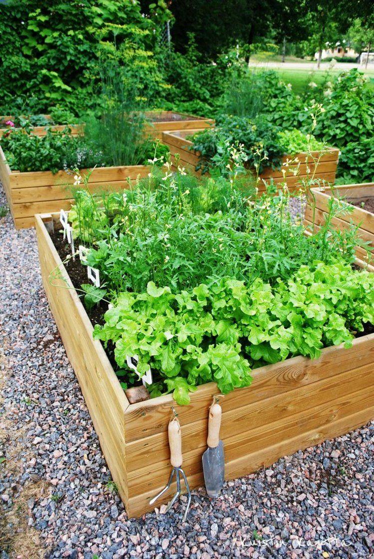 Drewniane Skrzynki Do Ogrodu Small Backyard Landscaping Backyard Landscaping Home Vegetable Garden
