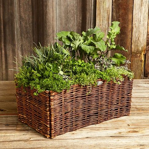 Natural Willow Vegetable Planter Great For The Patio Vegetable Planters Balcony Planters