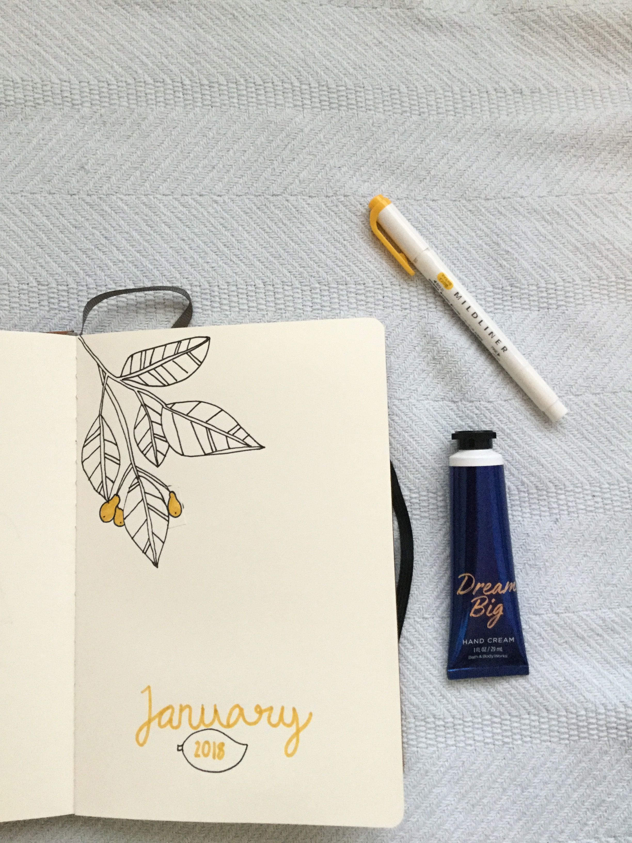Cover Page Idea Bulletjournal January 2018 Bullet Journals