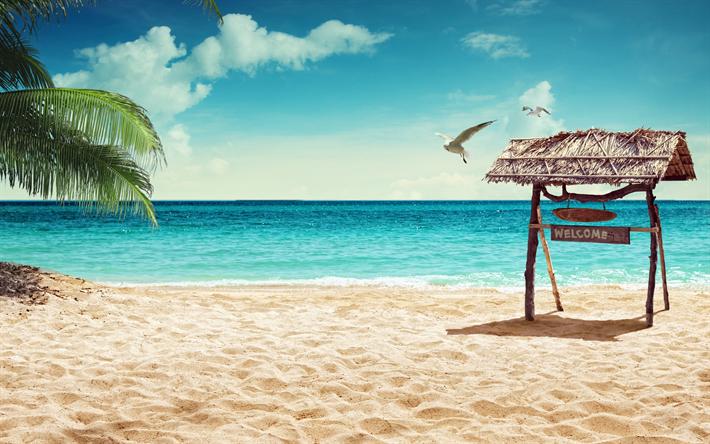 Download Wallpapers Tropical Island Beach Summer Vacation Pales Palms Sea Summer Sun Besthqwallpapers Com Playas Paradisiacas Mar Y Playa Vacaciones De Verano