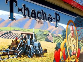 Tehachapi at San Joaquin Memorial - Fresno