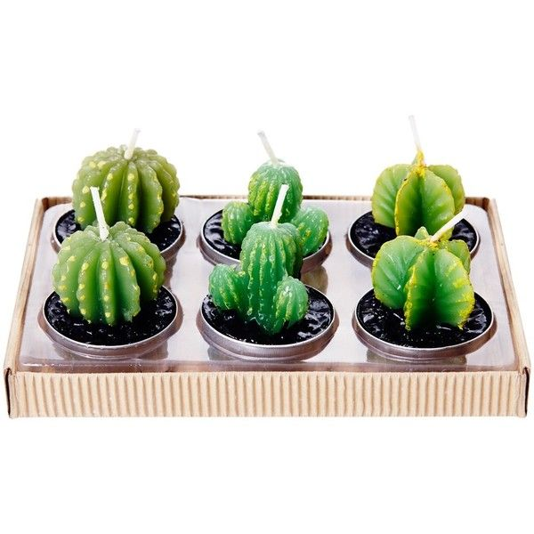 Sweet Little Candle Cacti ($17) ❤ liked on Polyvore featuring home, home decor and fillers