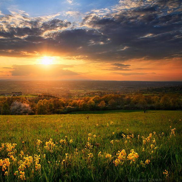 20 High Definition Spring Wallpapers Springtime Photography Spring Landscape Photography Spring Pictures