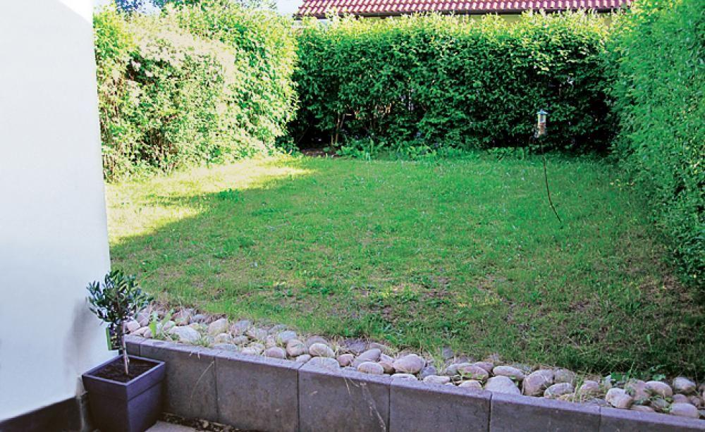 Vom Rasen zum kleinen Gartentraum | Gartenträume, Rasen und Vorher ...