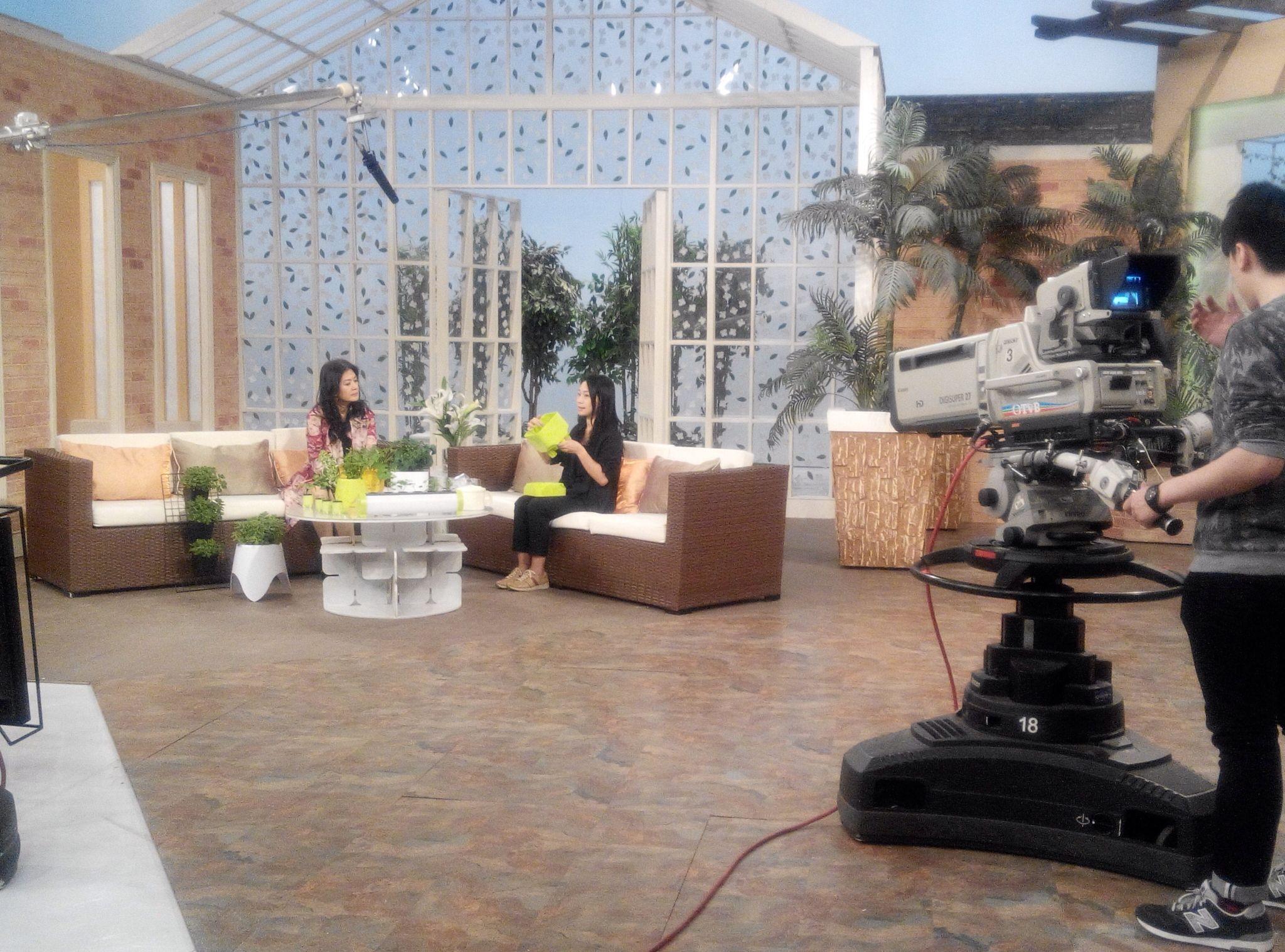 TVB Interview 訪問花絮 Home decor, Outdoor decor, Decor