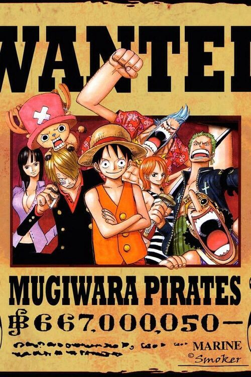 The Mugiwara crew. Their total bounty raised but it's still cool. Especially zoro's face....