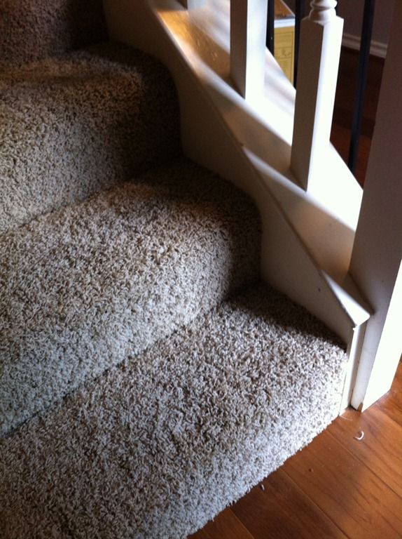Light Neutral Frieze Carpet From Home Depot