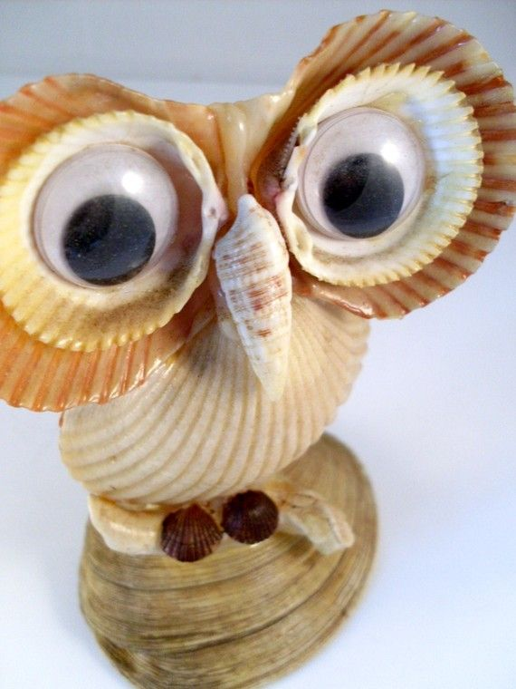 My mom and i used to make sea shell critters i loved for Animals made out of seashells