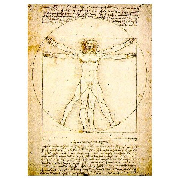 Vitruvian man / Leonardo da Vinci | Art is everywhere | Pinterest