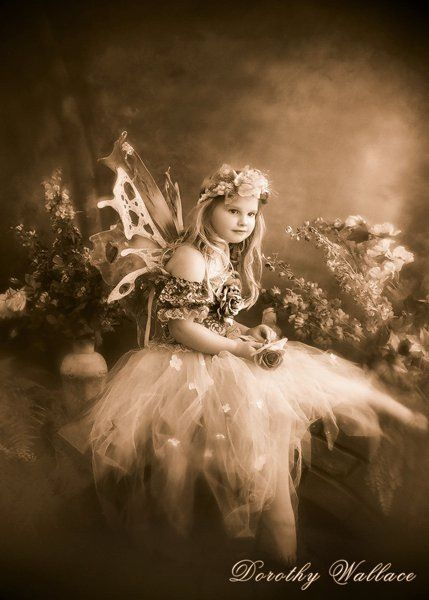 Dorothy Wallace Photography