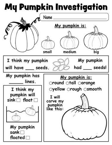Pumpkin Investigation Worksheet Free Printable Preschool Printables Kindergarten Science Fall Kindergarten Preschool Science
