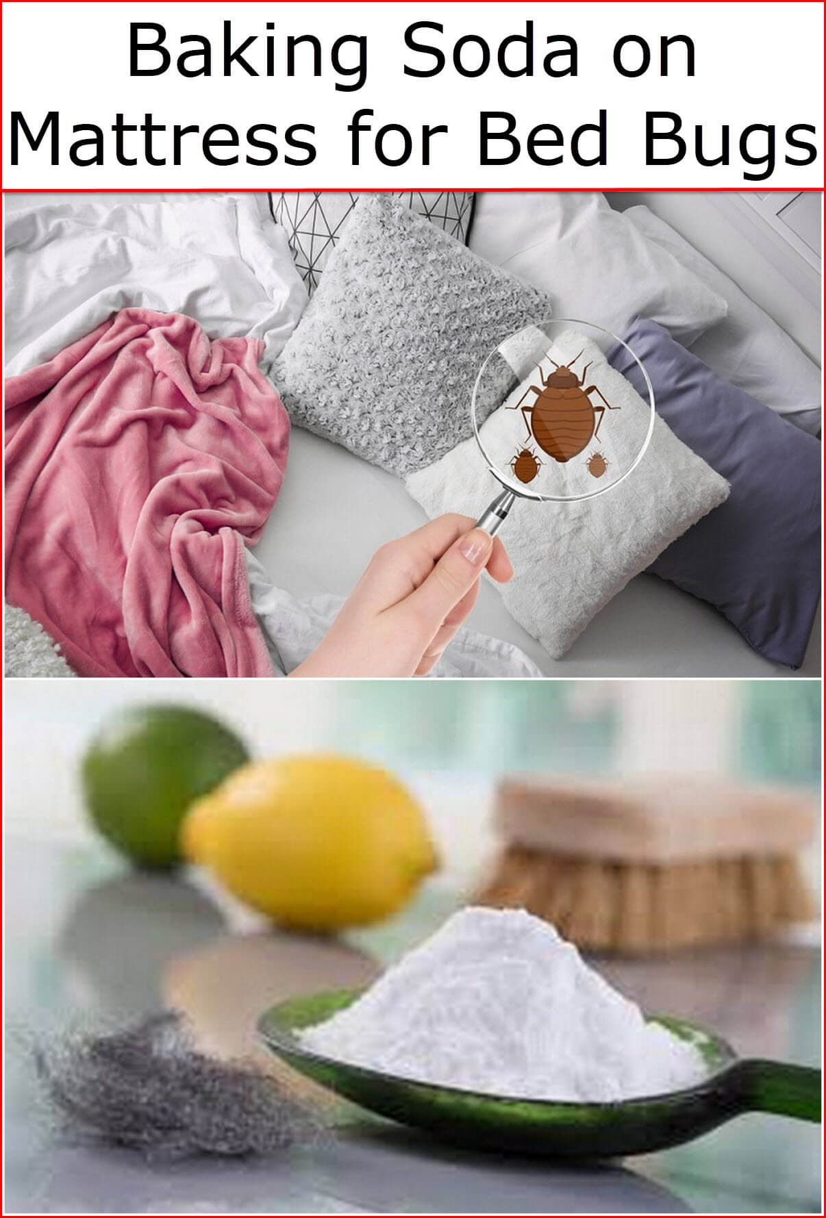 a057a031595 Baking soda works effectively to kill bedbugs