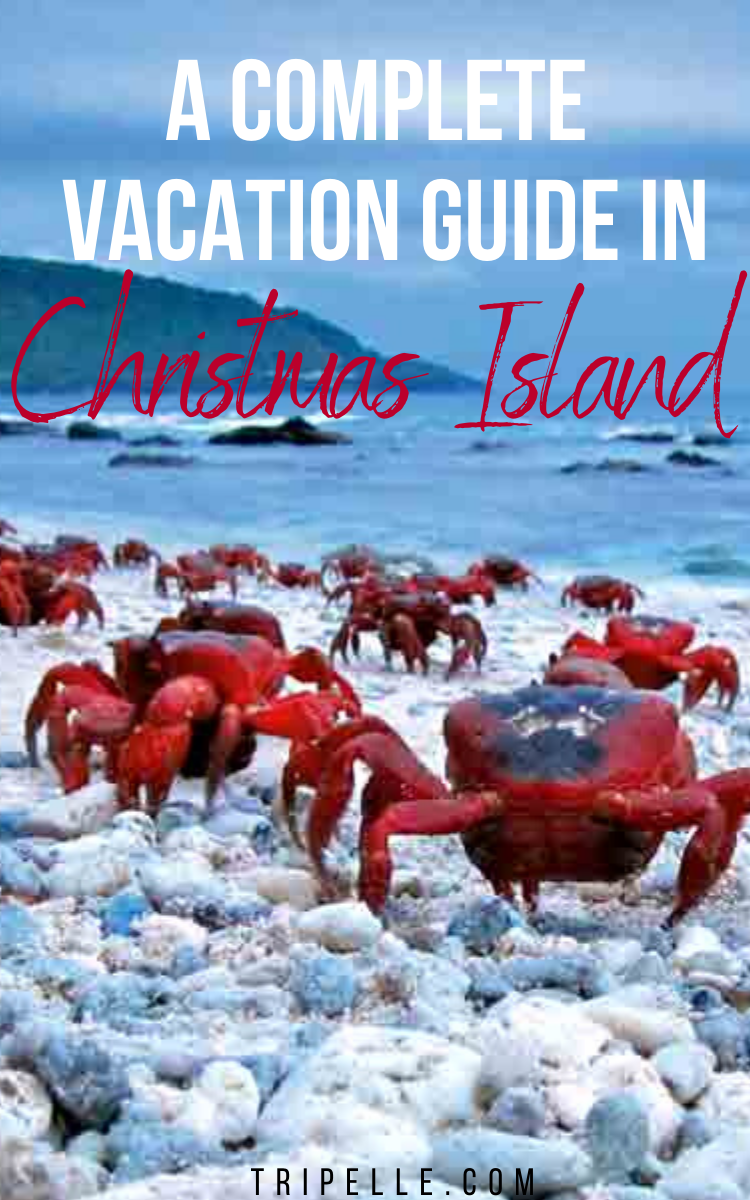 Complete guide on vacationing in Christmas Island, Australia