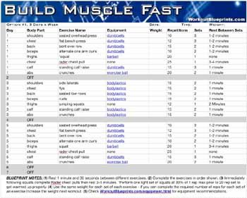 Build muscle fast workout blueprint download info pinterest build muscle fast workout blueprint download malvernweather Images