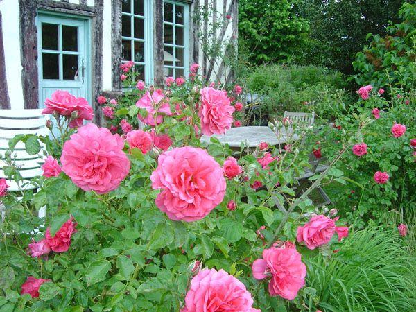 Jardin du pays d'Auge (France)