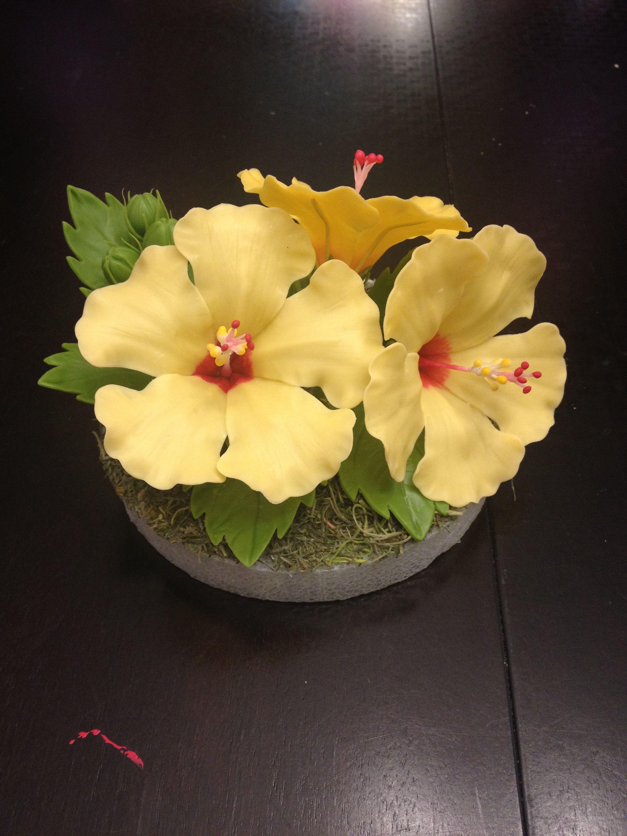 Hibiscus Cold Porcelain Flower Clay Art Tutorials