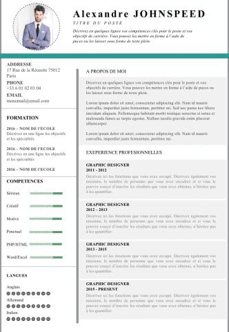 Cv De Cadre Dirigeant  Dataviz    Cv Template
