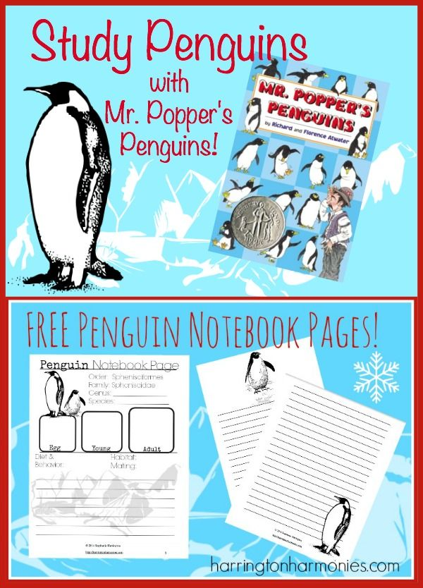 Free 3 page penguin notebook pages. | Penguins, Free and Homeschool