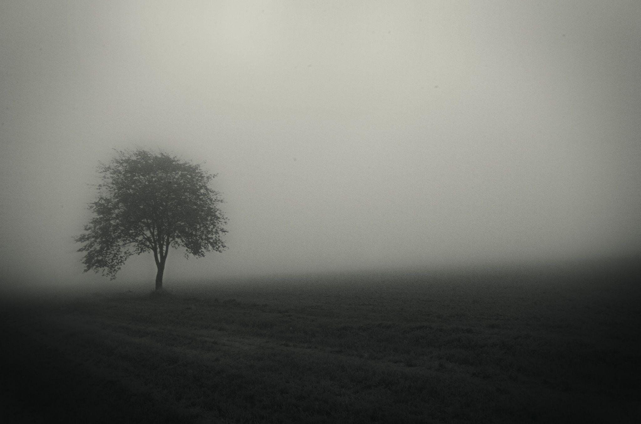 Quiet atmosphere by Kjeld Agerskov on 500px