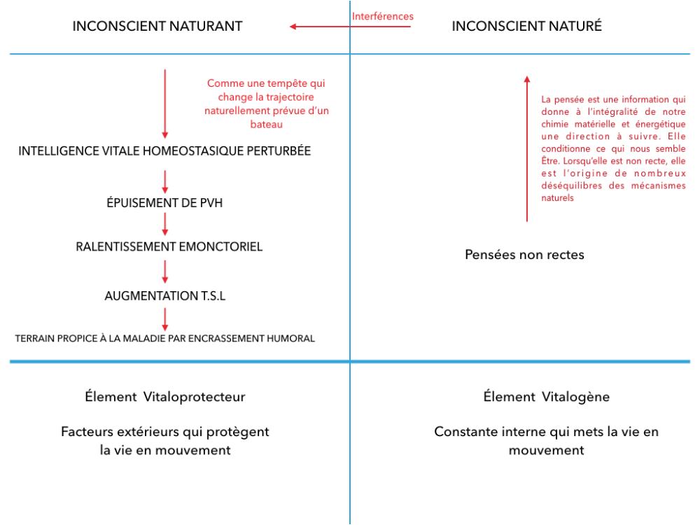 Coach Naturopathe Specialise En Neurosciences Naturopathie Neurosciences Inconscient