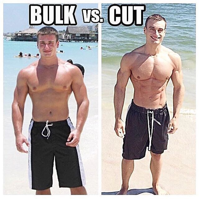 how to cut and bulk